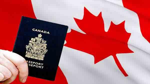 پیشنهاد شغلی از کانادا